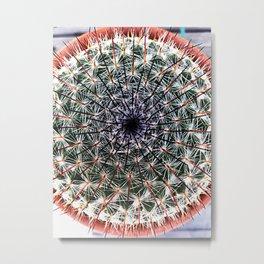 Spiky Metal Print
