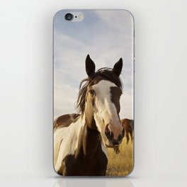 Western Paint Horse iPhone Skin