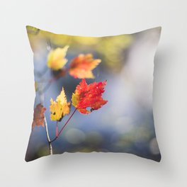 Autumn Soliloquy Throw Pillow