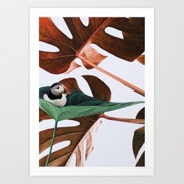 Penguin likes nature Art Print