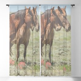 Wyoming Wild_Horses - II Sheer Curtain