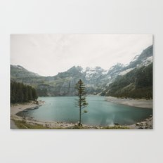 Lone Switzerland Tree - Landscape Photography Canvas Print