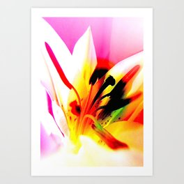 Abstract Of The Lily Art Print