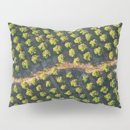 In a Row Pillow Sham
