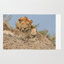 Sleeping Lioness Rug
