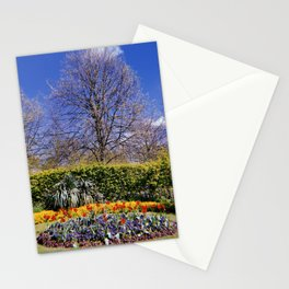 A poppy is a flowering plant in the subfamily Papaveroideae Stationery Cards