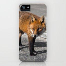 Milky-Eyed Fox iPhone Case