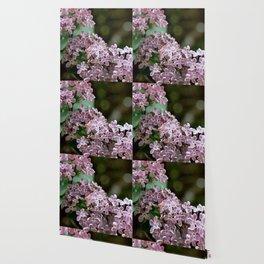 Femme Wallpaper