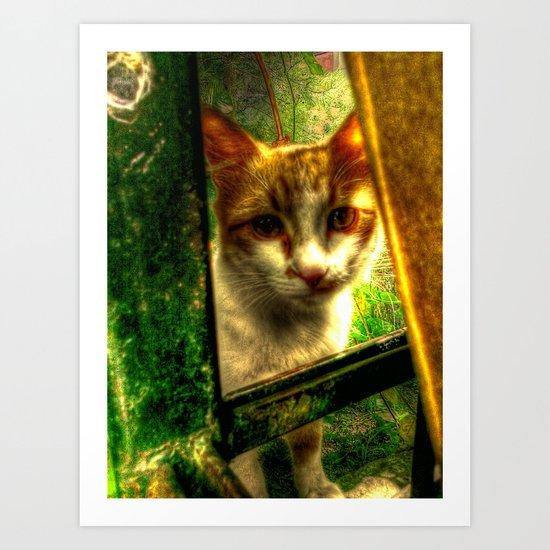 Daisy Cat Art Print
