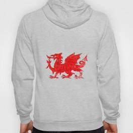 Welsh Dragon With Grunge Hoody