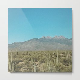 Southwest Desert Metal Print