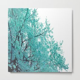 Turquoise Cherry Blossoms Metal Print
