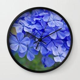 Summer garden blues - macro floral phtography Wall Clock