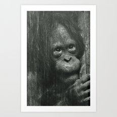 Sad eyes Art Print