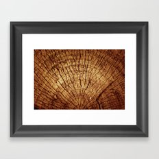 Burnt sun tree Framed Art Print