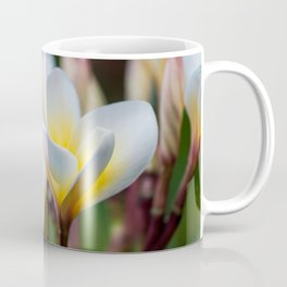 White Spring Flower Coffee Mug