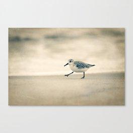 Just Keep Walking Canvas Print