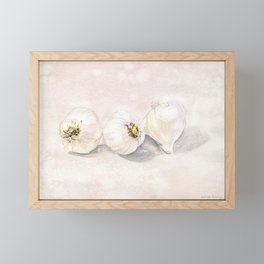 Garlic Watercolor Framed Mini Art Print