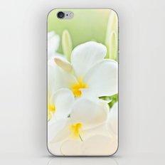 White Plumeria 2 iPhone & iPod Skin