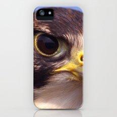 Lanner Falcon iPhone (5, 5s) Slim Case