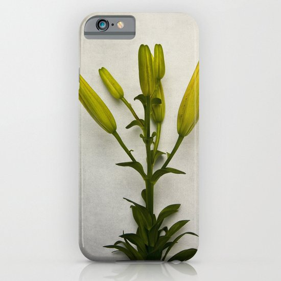 Botanical Lily No. 7733 iPhone & iPod Case