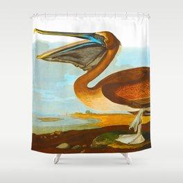 Brown Pelican Illustration Shower Curtain