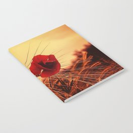 Autumn Red Poppies Notebook