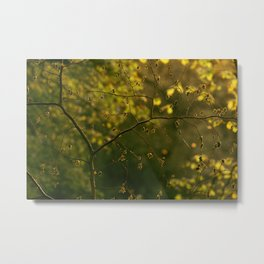 Golden Green Metal Print