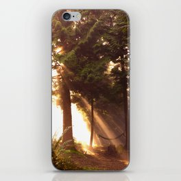 Light through the trees iPhone Skin