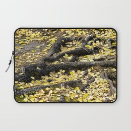Summers Fall Laptop Sleeve