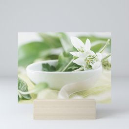 Spring made ​​of dreams with snowdrops and Porzellan Mini Art Print