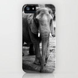 Gentle One iPhone Case