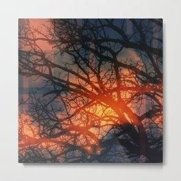 Trees In The Golden fog Metal Print