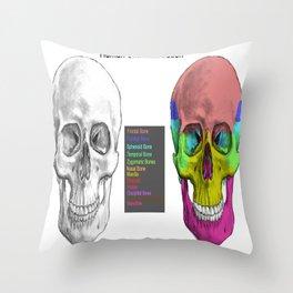 Human Skull Anatomy Throw Pillow