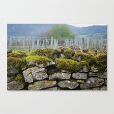 Vineyard Wall, Eastern France Canvas Print