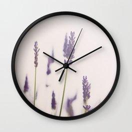 a purple haze of lavender photograph Wall Clock
