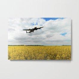 Golden Fields Metal Print