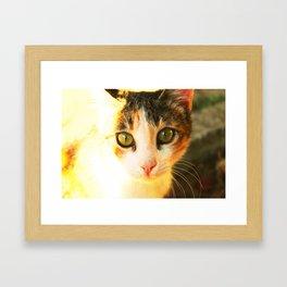 She Has A Secret! Framed Art Print