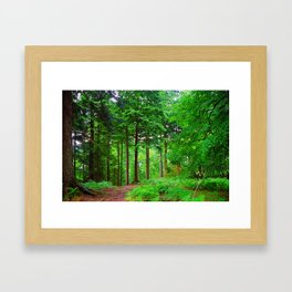"""Scottish Greenwood (i)"" by ICA PAVON Framed Art Print"