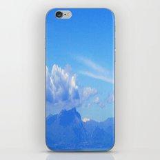 Blu iPhone & iPod Skin