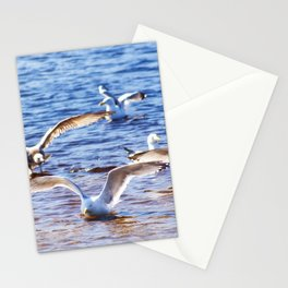 Landing Party Stationery Cards