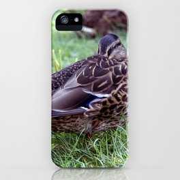 Mittagsruhe / at noon rest iPhone Case