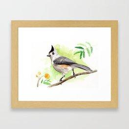 Watercolor Titmouse Framed Art Print