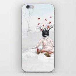 Winter haven iPhone Skin