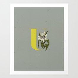 U for Urn Plant Art Print