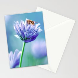 Hoverfly 48 Stationery Cards