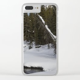 Carol M Highsmith - Snow Covered Landscape Clear iPhone Case