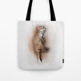The Sleeping Beauty Tote Bag