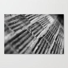 {texture} Canvas Print