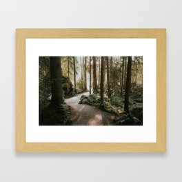 Lost in the Forest - Landscape Photography Framed Art Print
